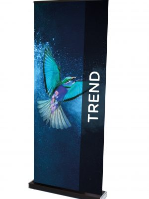 Trend Roll up banner